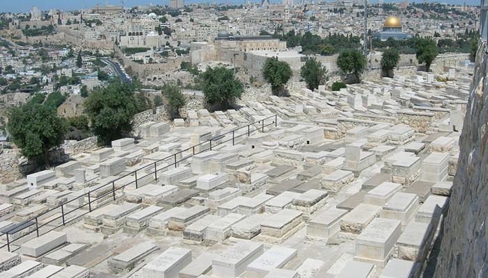 İsrail - Zeytindağı