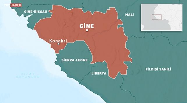 Ekspres 1 Yıllık Ticari Gine Vizesi