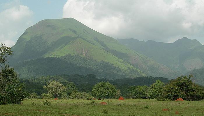 Gine - Nimba Dağı