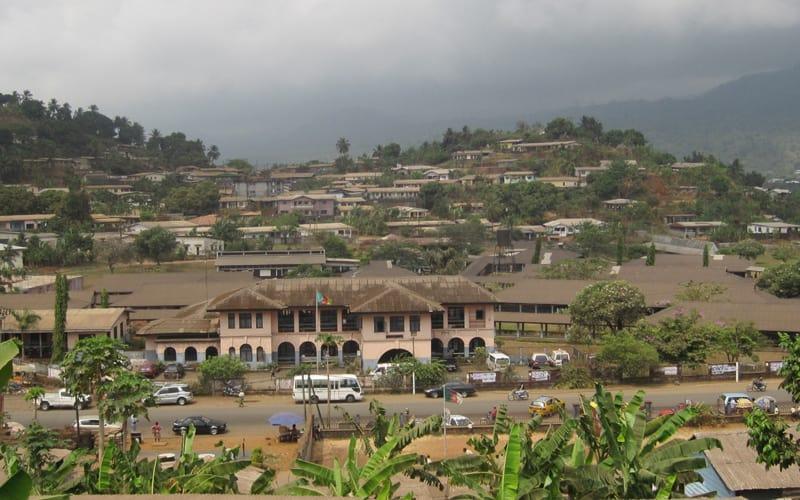 Kamerun Vizesi Kaç Günde Çıkar?