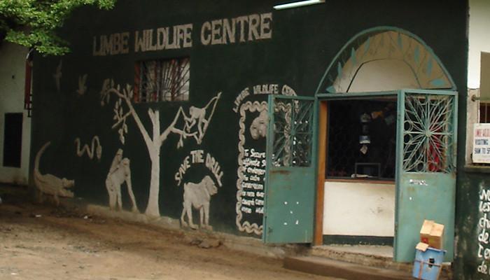 Kamerun - Limbe Yaban Hayatı Merkezi