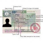 Romanya Tır Şoförü Vizesi Örneği
